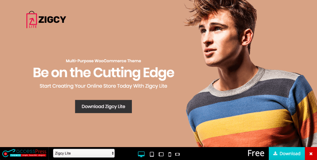 Zigcy Lite woocommerce free themes