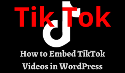 How to embed TikTok videos in WordPress - feature image
