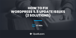Fix WordPress 5.5 Update Issues