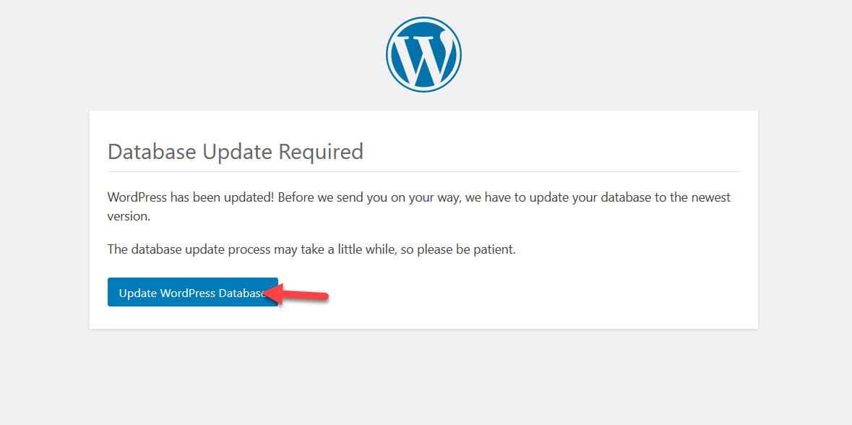 update wp database