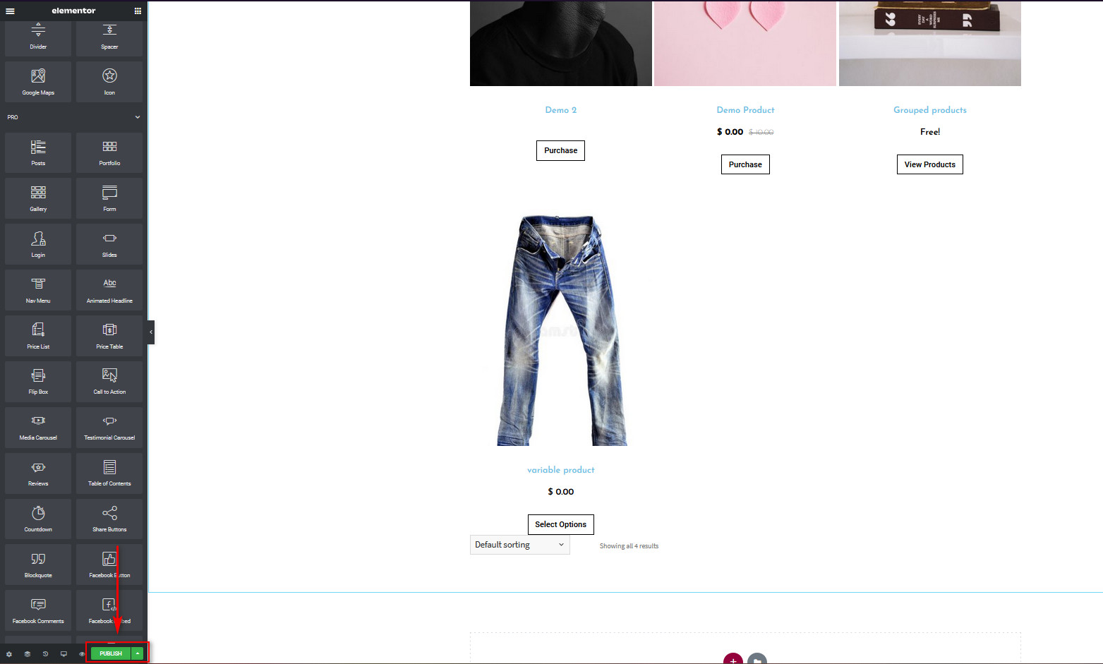 WooCommerce Shop Page in Elementor - publish button