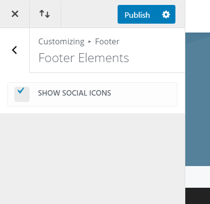 hide footer icons