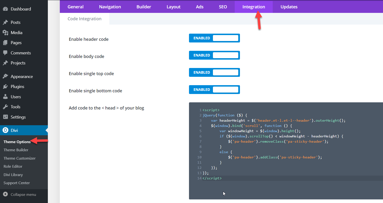 javascript code pasted
