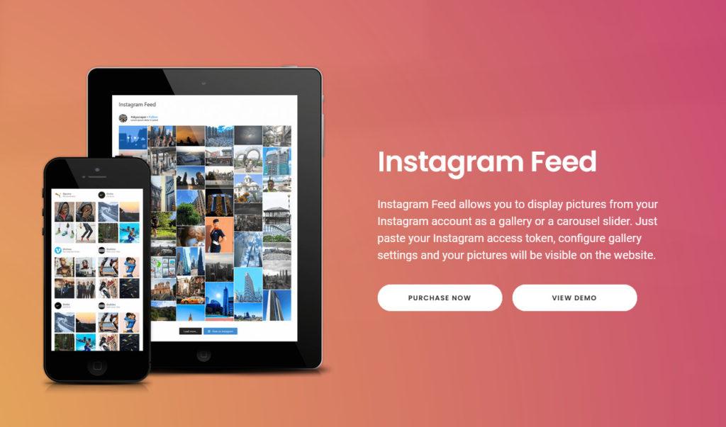 Social Media Plugins for WordPress - Instagram feed gallery