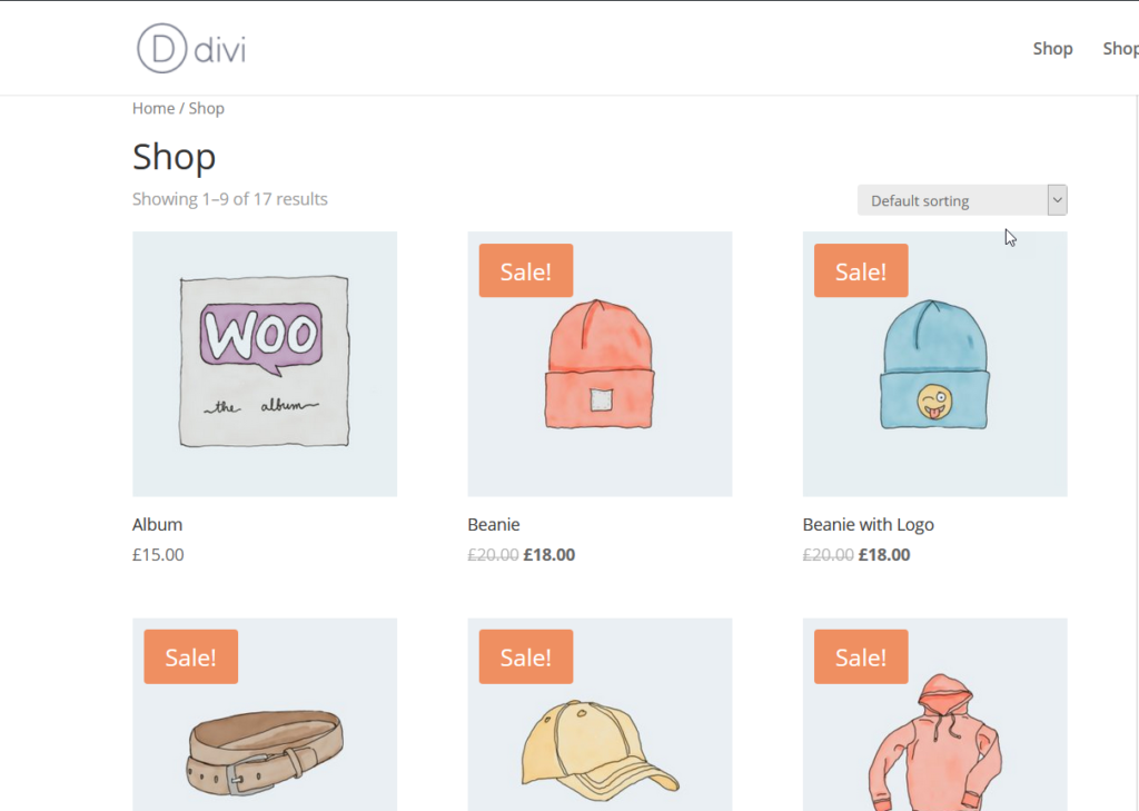 customize the woocommerce product page in divi - divi shop