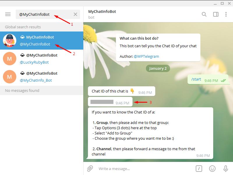 Add Telegram to WordPress - Chat ID