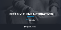 Best Divi Theme Alternatives reviewed