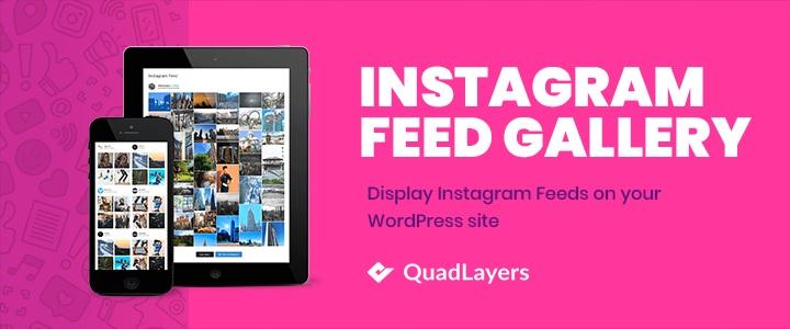 instagram feed gallery best wordpress instagram themes