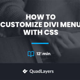 How to customize Divi menu with CSS