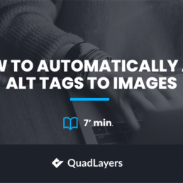 automatically Add ALT Tags to Images