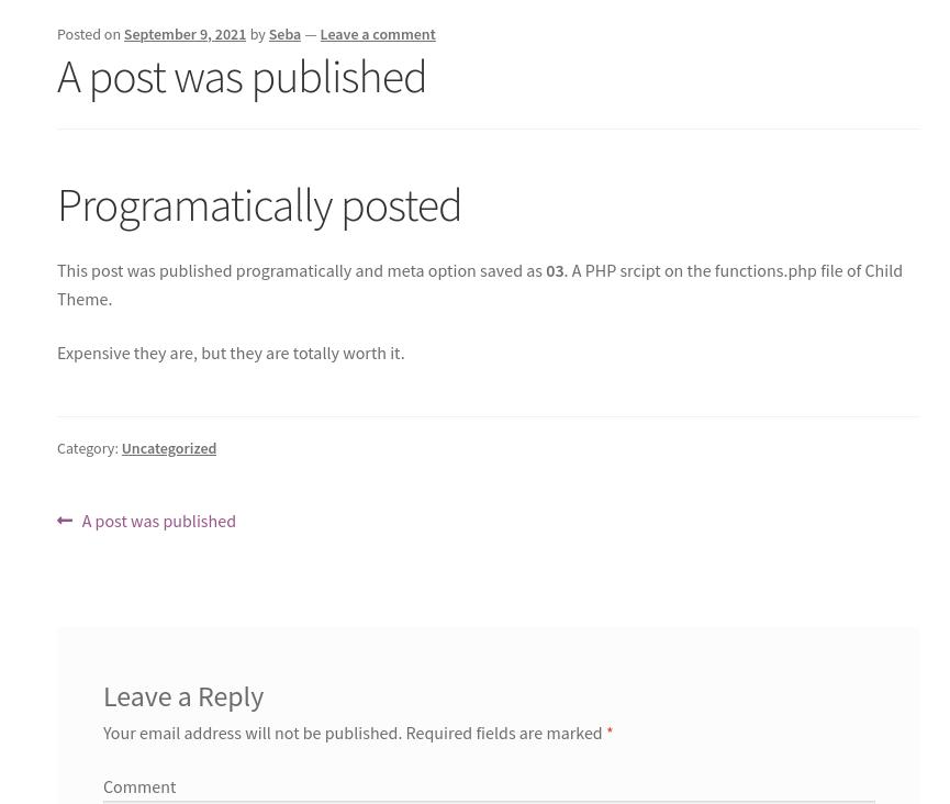 publish post programatically